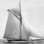 359-puritan
